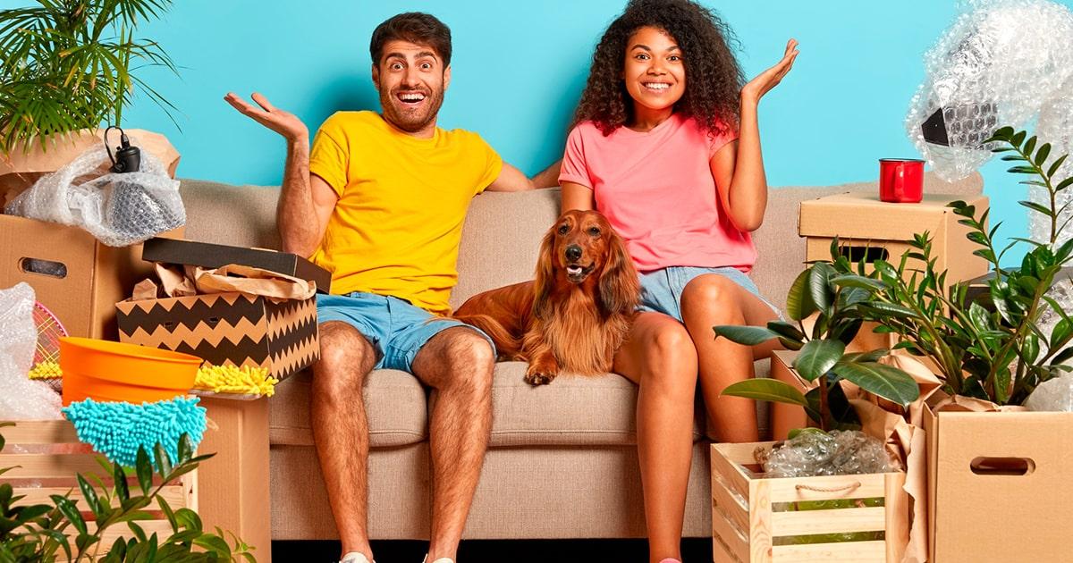 Custodia de mascotas, con quién se queda en caso de divorcio